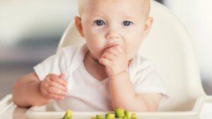 jenis nutrisi anak