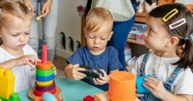 Pengertian Dan Jenis Perkembangan Anak